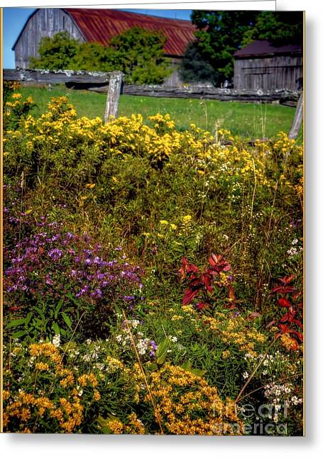A Summer Evening Greeting Cards - Autumn Wildflowers Greeting Card by Henry Kowalski