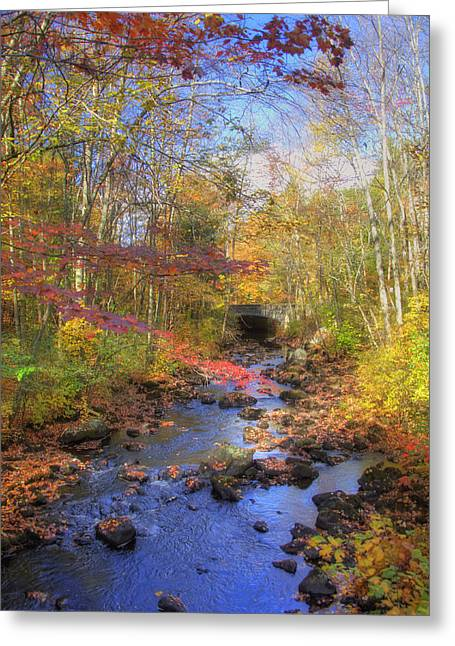 New England Autumn Scenes Greeting Cards - Autumn Woods Greeting Card by Joann Vitali