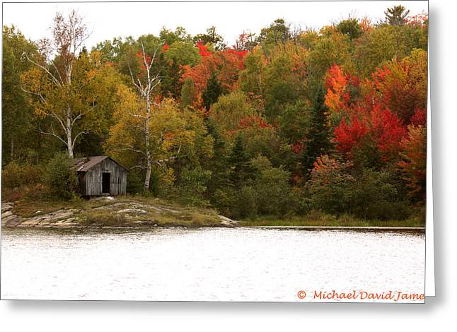 Cabin On A Lake Greeting Cards - Autumn Woods Greeting Card by Michael David James