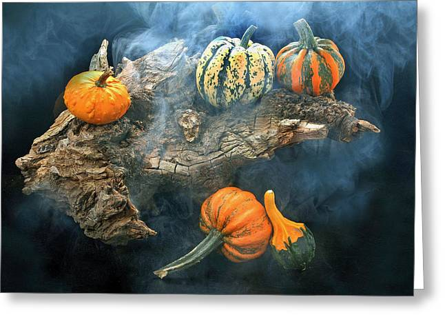 Tree Roots Greeting Cards - Autumnal 2 Greeting Card by Manfred Lutzius