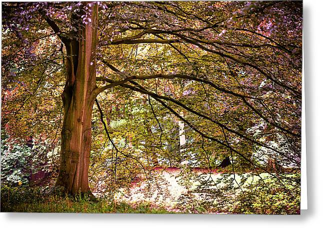 Autumnal Colors in the Summer Time. De Haar Castle Park Greeting Card by Jenny Rainbow