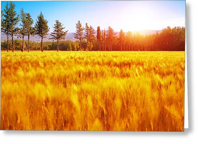 Beautiful Scenery Greeting Cards - Autumnal landscape Greeting Card by Anna Omelchenko