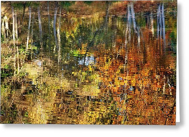 Autumn Photographs Digital Art Greeting Cards - Autumnal Reflections II Greeting Card by Natalie Kinnear