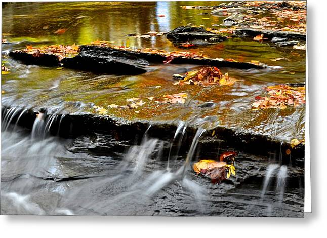 Autumnal Serenity Greeting Card by Frozen in Time Fine Art Photography