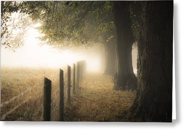 Autumn Greeting Cards - Autumnal walkway Greeting Card by Chris Fletcher