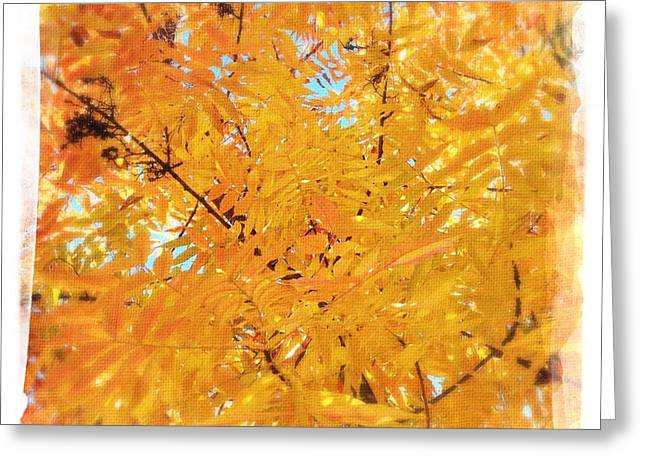 Warm Tones Greeting Cards - Autumns Array 8 Greeting Card by Penelope Moore