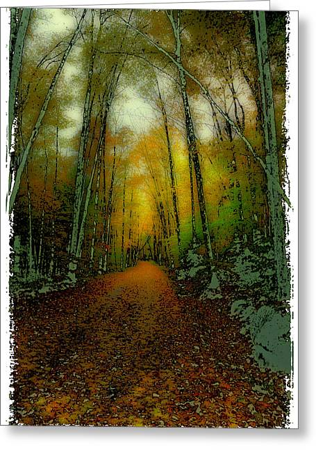 Autumns Back Roads Greeting Card by David Patterson