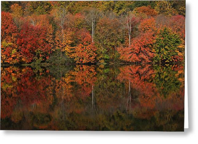Reflecting Water Greeting Cards - Autumns Design Greeting Card by Karol  Livote