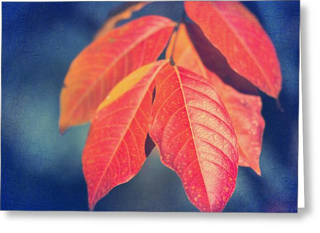 Crape Greeting Cards - Autumns End Greeting Card by Heidi Smith