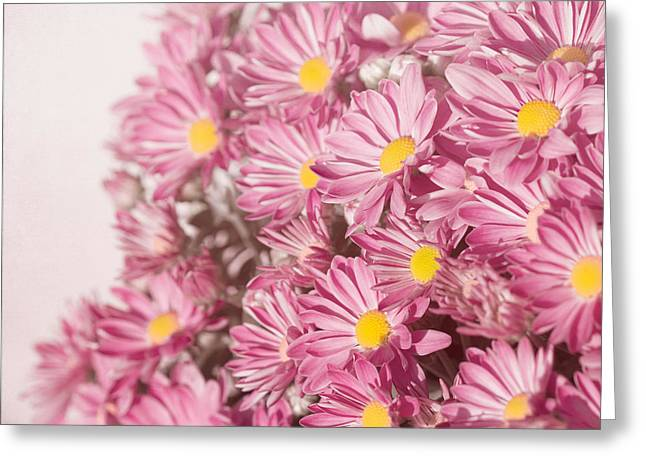 Kim Photographs Greeting Cards - Autumns Flowers Greeting Card by Kim Hojnacki