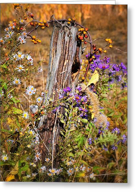Close Focus Nature Scene Greeting Cards - Autumns Flowers Greeting Card by Thomas Schoeller
