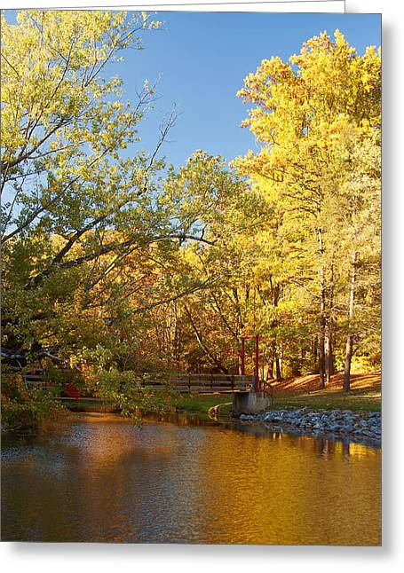 Pond In Park Greeting Cards - Autumns Golden Pond Greeting Card by Kim Hojnacki