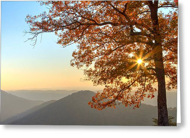 Mountaintop. Trees Greeting Cards - Autumns Light Greeting Card by Debra and Dave Vanderlaan