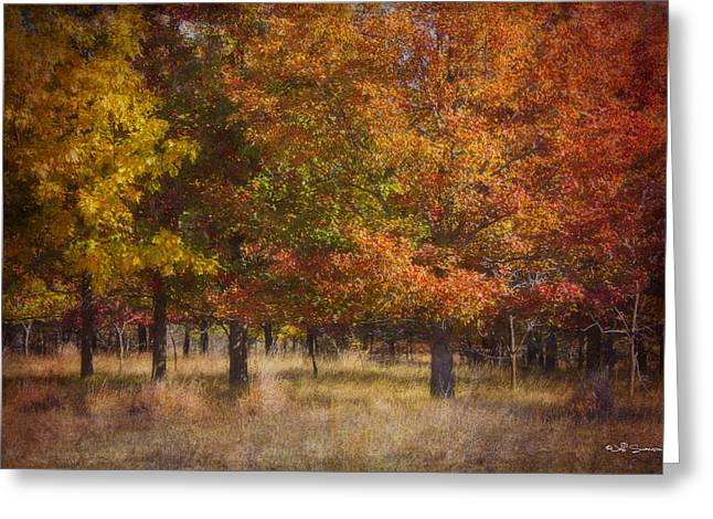 Autumn's Miracle Greeting Card by Jeff Swanson