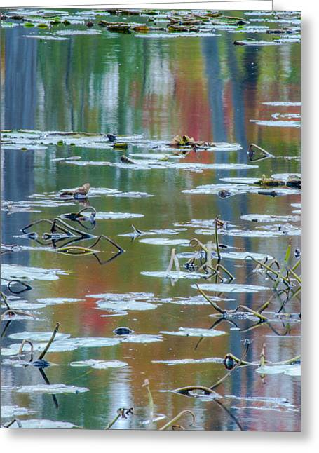 Reflection Harvest Greeting Cards - Autumns Painting Greeting Card by Optical Playground By MP Ray
