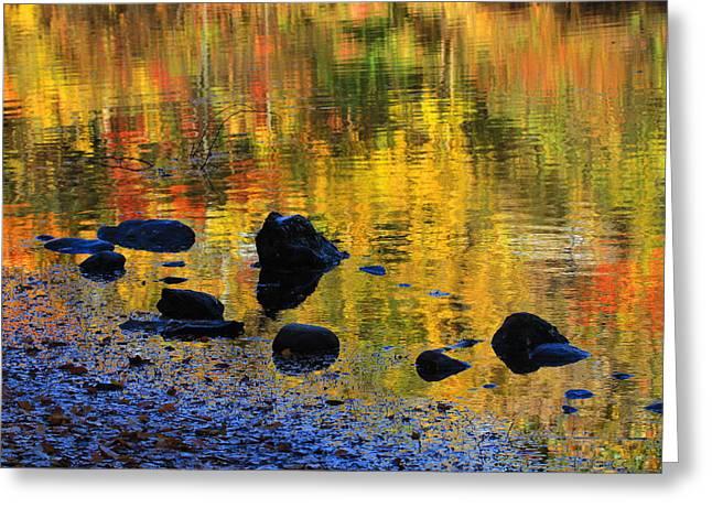 Autumns Rainbow Greeting Card by Karol Livote