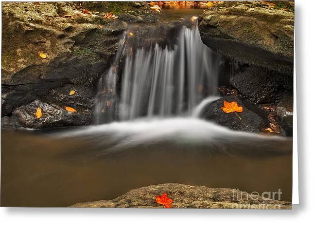Pictorial Landscape Greeting Cards - Autumns Stream Greeting Card by Susan Candelario