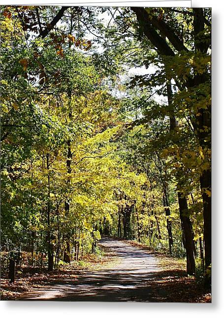 Autums Splendor Greeting Card by Bruce Bley