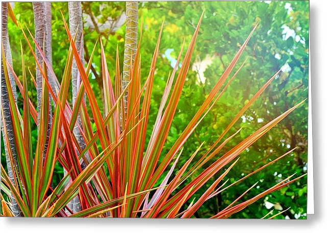 Ewa Greeting Cards - Autumn Palm  Greeting Card by Brandy Muses