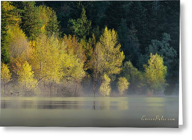 Nebbia Greeting Cards - AUTUNNO Alba sul lago - AUTUMN Lake dawn 9681 Greeting Card by Enrico Pelos