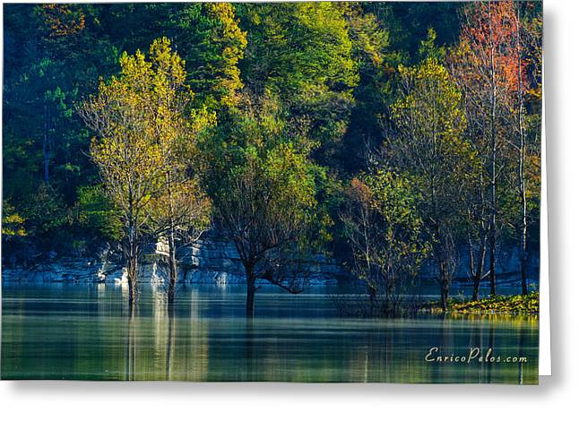 Nebbia Greeting Cards - AUTUNNO Alba sul lago - AUTUMN Lake dawn 9711 Greeting Card by Enrico Pelos