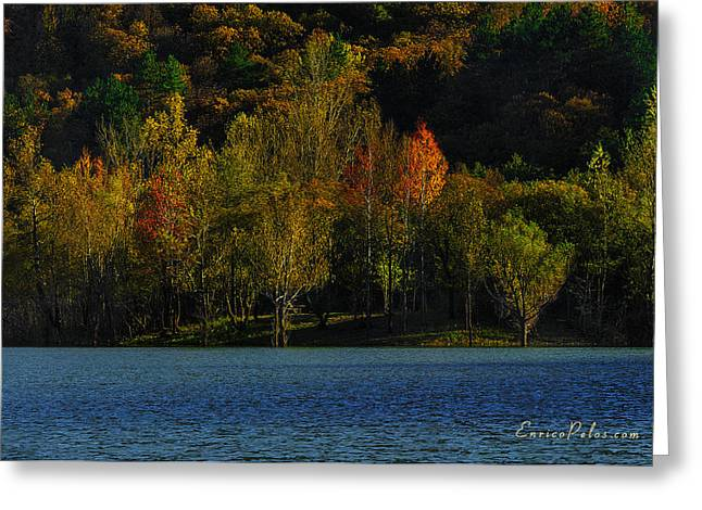 Nebbia Greeting Cards - AUTUNNO Alba sul lago - AUTUMN Lake dawn 9897 Greeting Card by Enrico Pelos