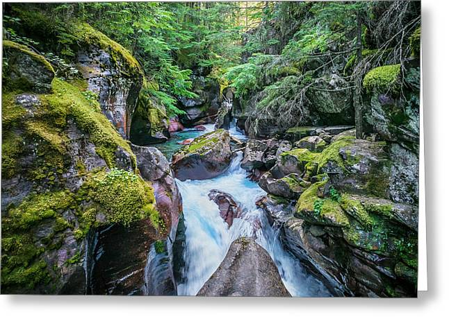 Clean Water Greeting Cards - Avalanche 5 Glacier National Park Greeting Card by Rich Franco