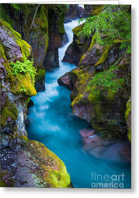 Flowing Greeting Cards - Avalanche Creek Greeting Card by Inge Johnsson