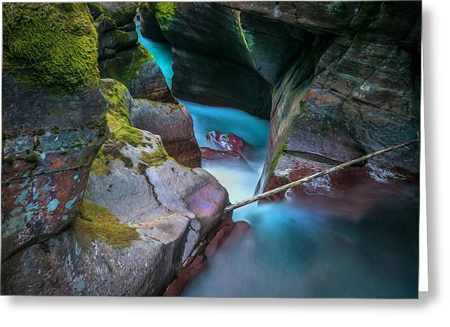 Avalanche Gorge Glacier National Park Painted   Greeting Card by Rich Franco