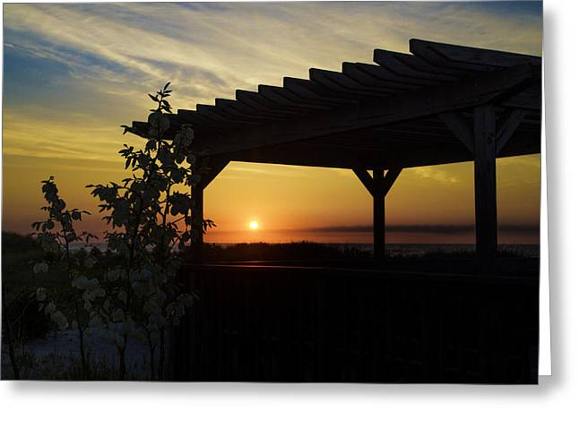 Sanddunes Greeting Cards - Avalon Beach Gazebo at Sunrise Greeting Card by Bill Cannon