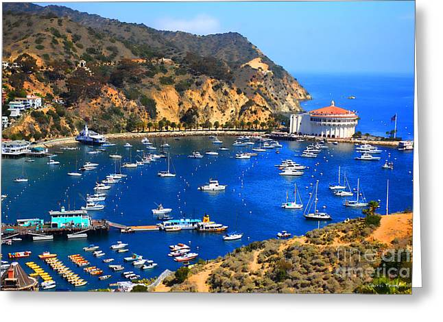 Avalon Harbor Greeting Card by Cheryl Young