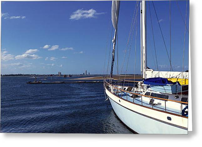 Sailboat Images Greeting Cards - Avalon, Santa Catalina Island Greeting Card by Panoramic Images