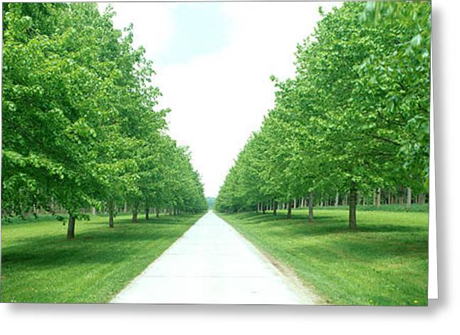 Chateau Greeting Cards - Avenue At Chateau De Modave Ardennes Greeting Card by Panoramic Images
