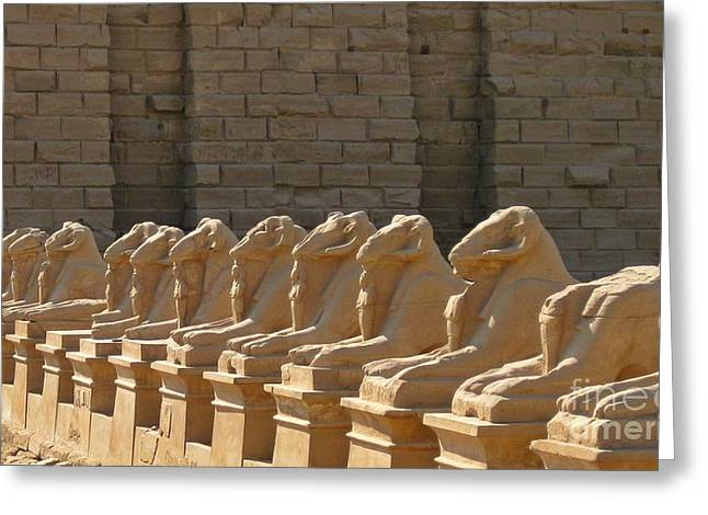 History Sculptures Greeting Cards - Avenue of Sphinxes Greeting Card by John Malone