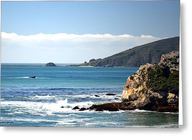 California Beach Art Digital Art Greeting Cards - Avila Bay From Pismo Beach Greeting Card by Barbara Snyder