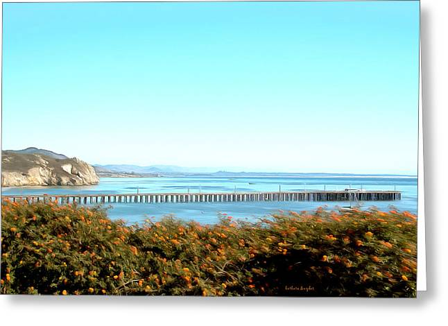 California Ocean Photography Paintings Greeting Cards - Avila Beach Pier Greeting Card by Barbara Snyder