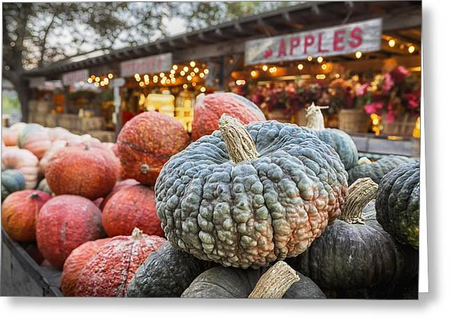 Pumpkins Greeting Cards - Avila Evening Greeting Card by Caitlyn  Grasso