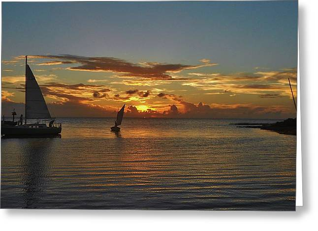 Kite Greeting Cards - Avon Harbor Pamlico Sound Sailboat Sunset 3 8/27 Greeting Card by Mark Lemmon