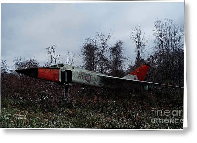 Conservative Greeting Cards - Avro Arrow in the Cove Greeting Card by Tom Straub