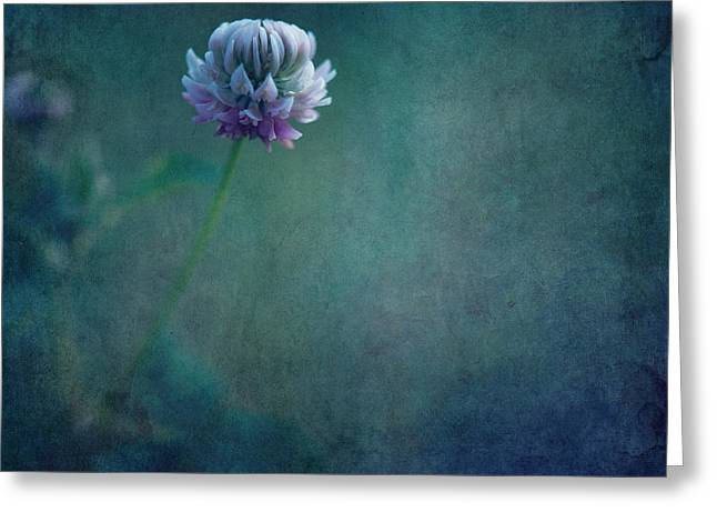 Clover Greeting Cards - Awaken From A Dream Greeting Card by Priska Wettstein