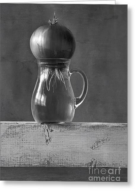 Water Jars Photographs Greeting Cards - Awakening Greeting Card by Elena Nosyreva