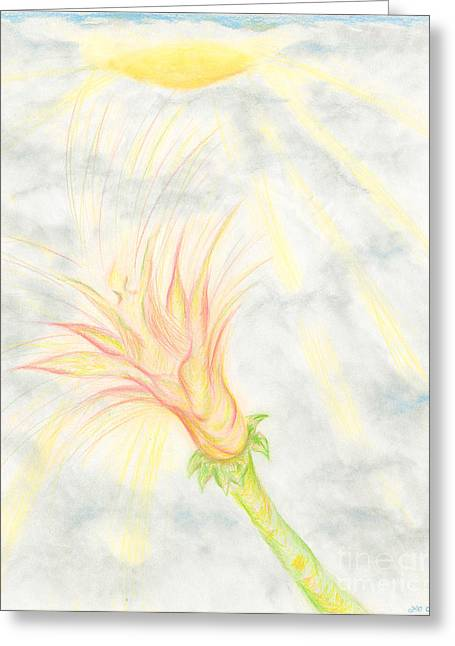 Peach Drawings Greeting Cards - Awakening Greeting Card by Kim Sy Ok