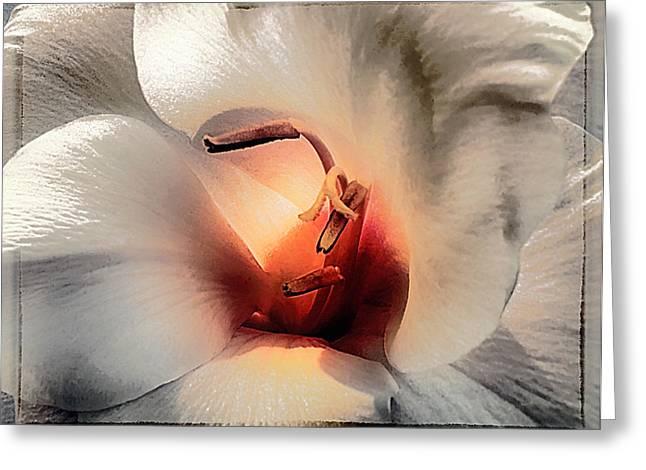 Gladiolas Greeting Cards - Awareness Greeting Card by Darlene Kwiatkowski