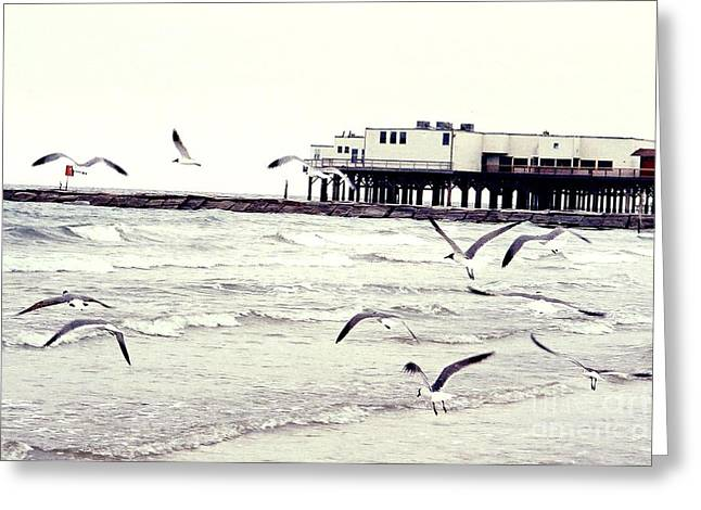 Galveston Greeting Cards - Away we go Greeting Card by Audrey Van Tassell