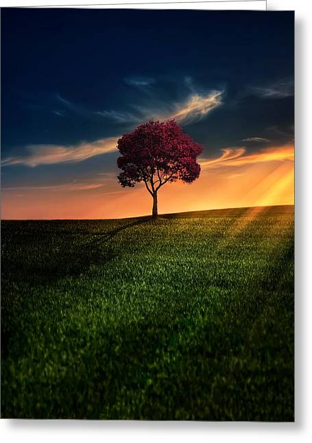 Ray Greeting Cards - Awesome Solitude Greeting Card by Bess Hamiti
