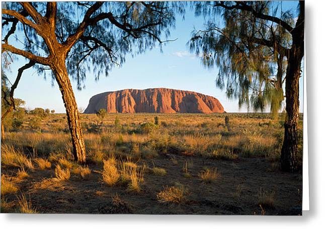 Aborigine Greeting Cards - Ayers Rock Australia Greeting Card by Panoramic Images