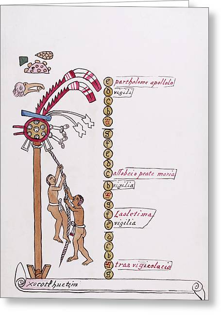 Aztec Month Hueymiccaihuitl Greeting Card by Library Of Congress