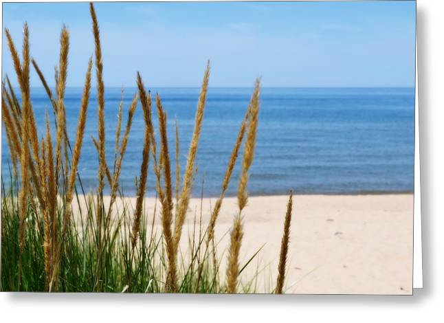 Sea Oats Greeting Cards - Azure Waters Greeting Card by Michelle Calkins