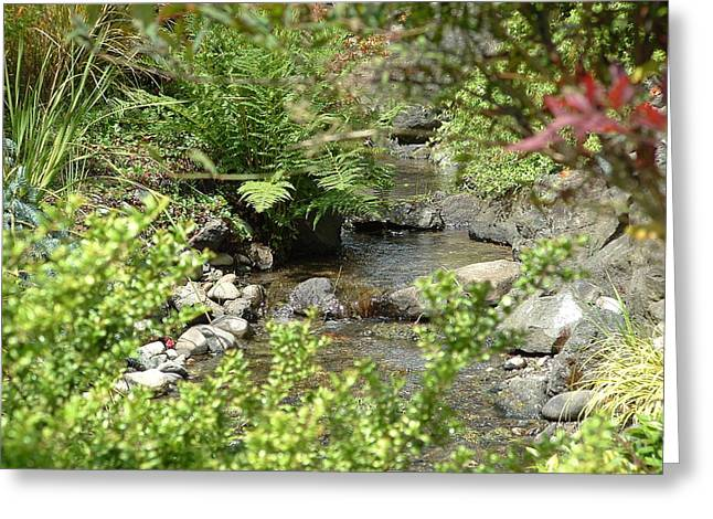 Babbling Brook Greeting Card by Christine Rivers