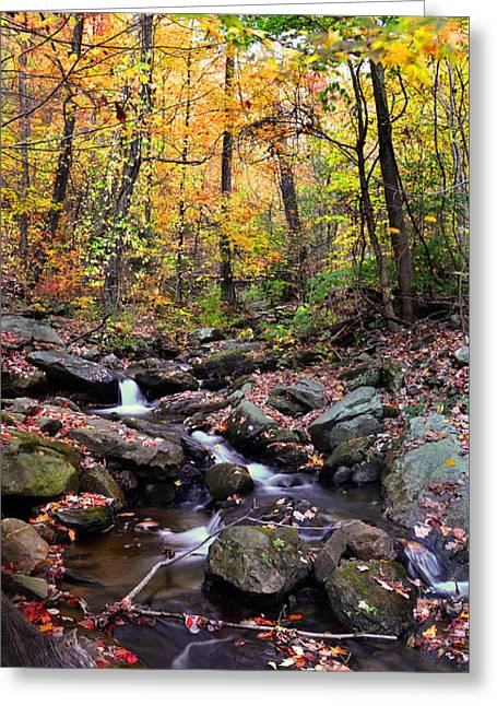 Babbling Greeting Cards - Babbling Brook Greeting Card by Christopher M Stewart